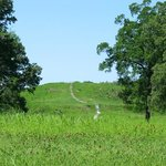 Poverty Point State Historic Site