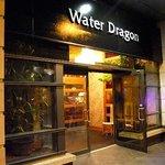 Foto de Water Dragon