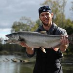 Manistee River Salmon