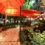 Peacock Garden Cafe Foto