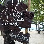 Dive Shop :)