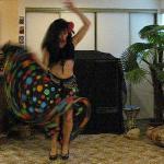 Zambra Gypsy - Flamenco Show Image