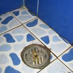 filthy shower drain