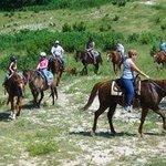 Stricker Trail Rides