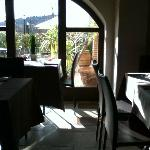 Photo of Oio alla Vaccareccia