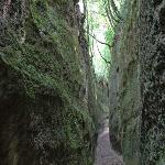 Maneggio Belvedere 사진