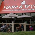 Harp & Wylie's
