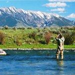 Montana Troutwranglers Day Tours