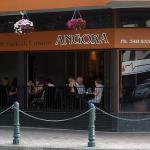Angora Photo