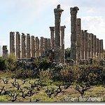 Ancient city of Diocaesarea-Olba