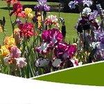 Bason Botanic Gardens