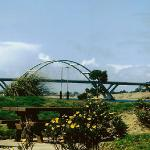 Robinson Park at Port of Alsea