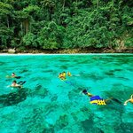 snorkeling @ PhiPhi Island