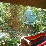 Looking out from our Veranda