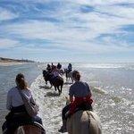 Horse & Carriage Tour