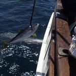 Helgren's Sportfishing
