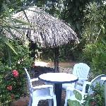 Parte del jardín interno.