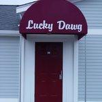 Lucky Dawg