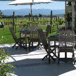 Coney Winery & Estate Foto