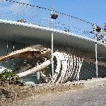 Kilbrittain Whale