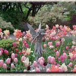 Hulda Klager Lilac Gardens صورة فوتوغرافية