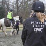 Park Lane Stables