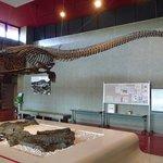 Museum Fosil dan Batubara
