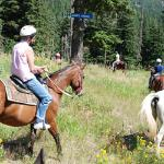 Mountain Horse Adventures Photo