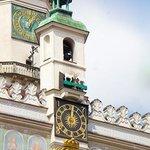 Koziolki Poznankie Ratusz Photo