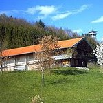 Museum Wald und Umwelt Ebersberg