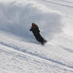 Par Powder Paradise - Day Tours