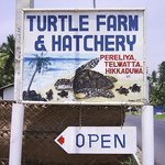 Turtle Hatchery Hikkaduwa