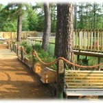 Captain Ron's Gator Park, Petting Zoo and Botanical Gardens Foto