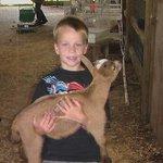 Barnyard Friends Peting Zoo