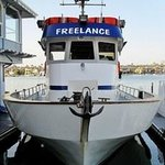 Freelance Sportfishing & Whale Watching-Day Boat Tours