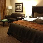 "The ""living/sleeping"" area of my King Suite."