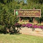 Trochu Arboretum & Gardens Foto