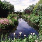 Gooderstone Water Gardens & Nature Trails