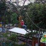 Canopy Land
