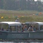 Plum Island Ecotours Photo