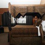 Africa Designer Suite