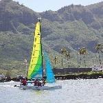 Kauai Beach Boys Photo