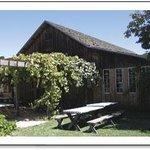 Avila Valley Barn