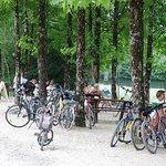 Reserve Zoologique de La Haute Touche