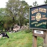Blaze Farm