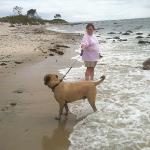 Rocco from pa loves the surf at harkness state park