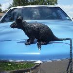 "The ""Ratmobile"""
