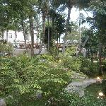 Lush & very well maintained vegetation around the grounds