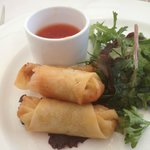 Spring Roll ~ appetizer