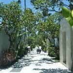 walk way too the villas